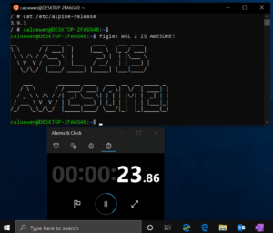 WSL Windows Linux
